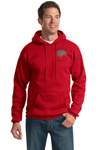 Picture of Troop 750 Heavy-Blend Hoodie with Logo
