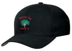 Picture of Troop 750 Baseball Hat